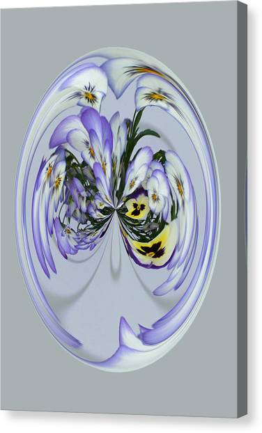Pansy Series 501 Canvas Print