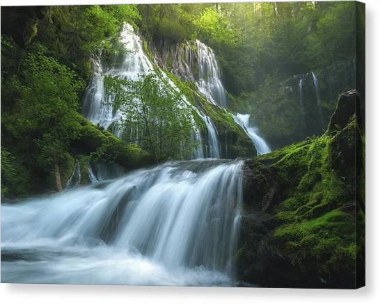 Panthers Canvas Print - Panther Creek Falls by Steve Schwindt