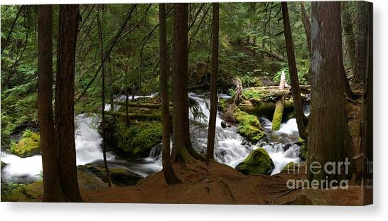Panther Creek Panorama- Washington Canvas Print