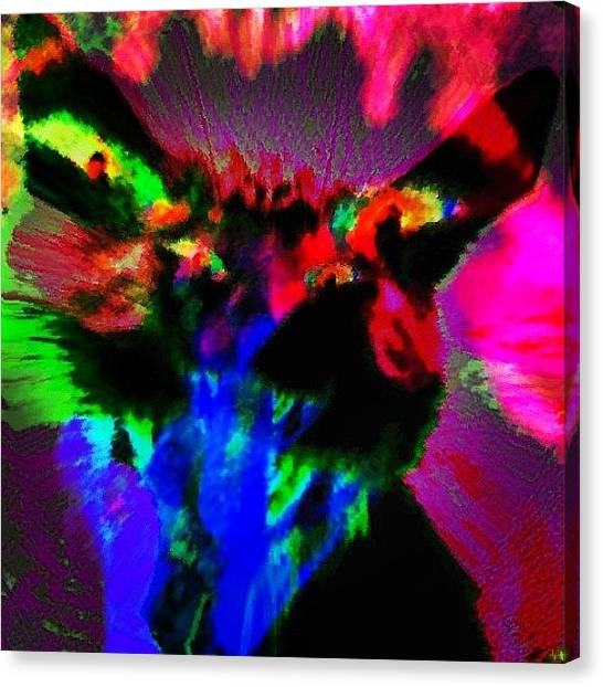 Panthers Canvas Print - Panthera Infernicus by Urbane Alien