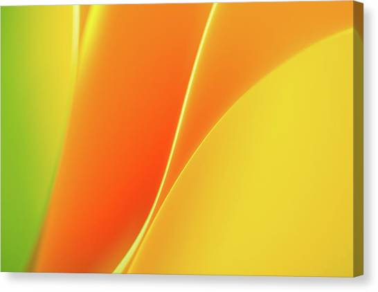 Paper Abstract Canvas Print