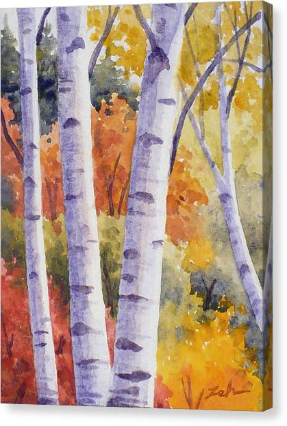 Paper Birches In Autumn Canvas Print
