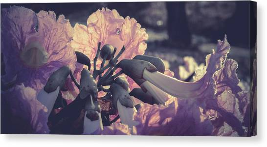 Paper Flowers - Purple Canvas Print