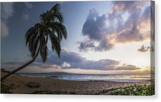 Palm Trees Sunsets Canvas Print - Paradise by Brad Scott