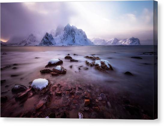 Paradise Canvas Print by David Mart?n Cast?n