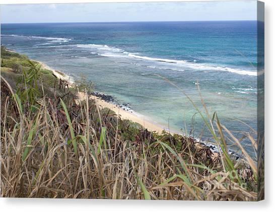 Paradise Overlook Canvas Print