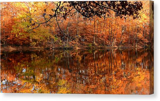 Maple Leaf Art Canvas Print - Paradiso by Lourry Legarde