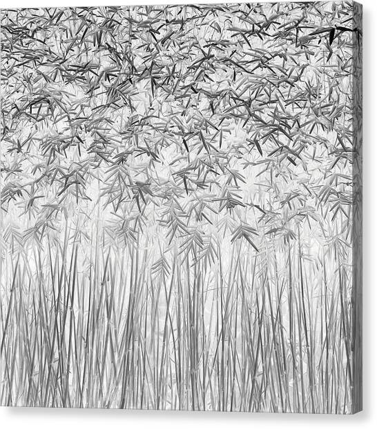 Parallelism Canvas Print by Jefflin Ling
