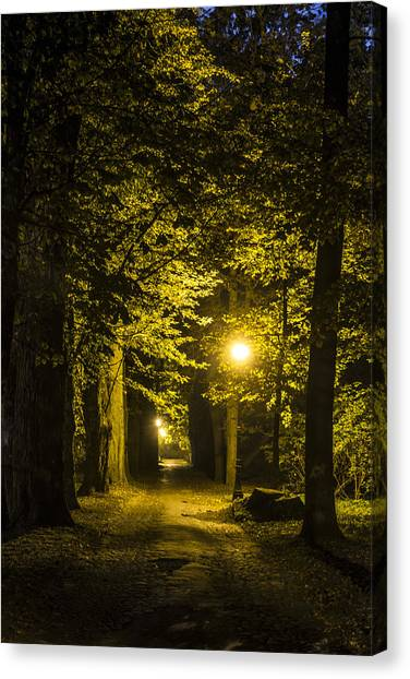 Night Lights Canvas Print - park Alley by Jaroslaw Grudzinski