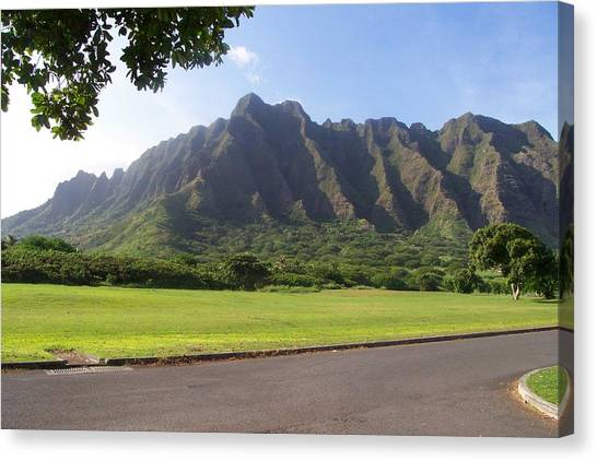 Park On Oahu Canvas Print