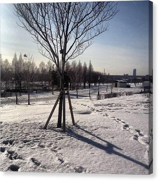 Ballet Canvas Print - Park #snow #aerosol #raleigh by Saito Hironobu