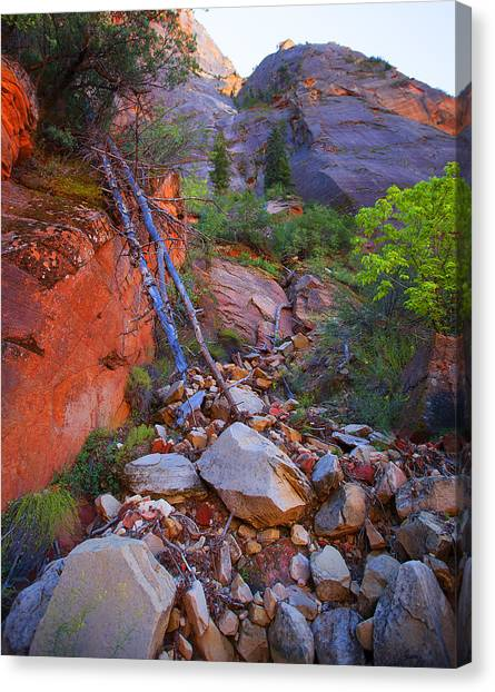 Zion National Park Utah Usa Canvas Print