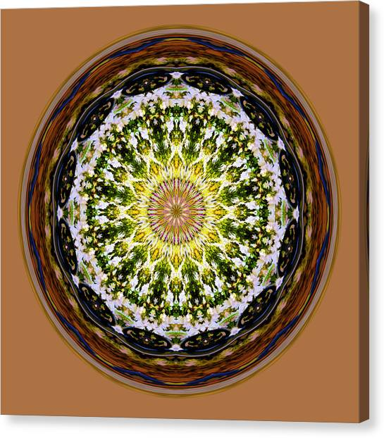 Parkside Mandala Canvas Print