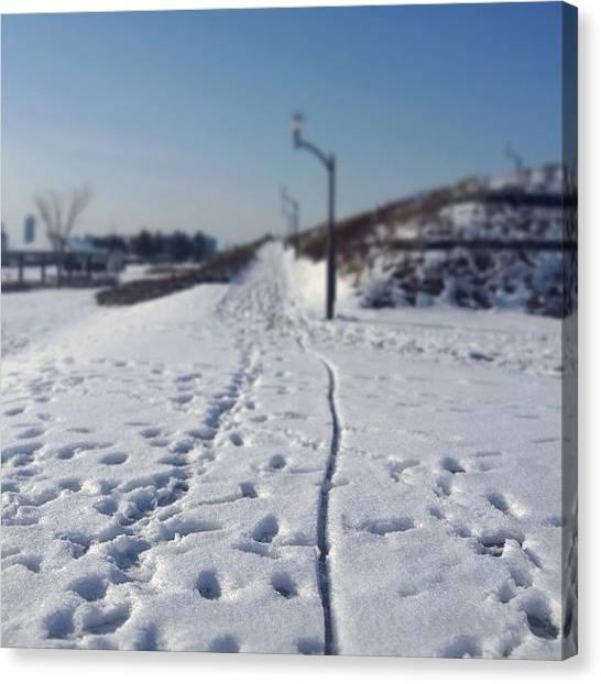 Ballet Canvas Print - Park#snow #aerosol #raleigh by Saito Hironobu