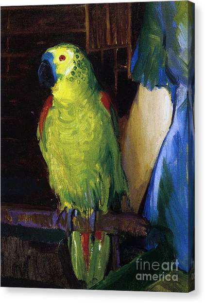 Perching Birds Canvas Print - Parrot by George Wesley Bellows