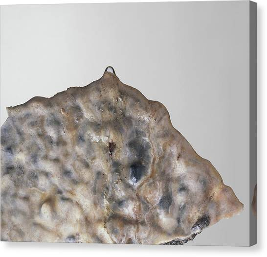 Stalactites Canvas Print - Part Of A Stalactite by Dorling Kindersley/uig