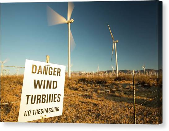 Clean Energy Canvas Print - Part Of The Tehachapi Pass Wind Farm by Ashley Cooper