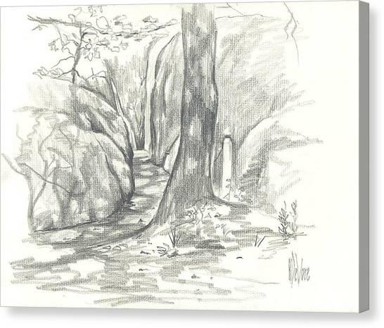 Passageway At Elephant Rocks Canvas Print
