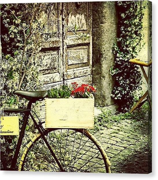 Cycling Canvas Print - Passeggiando Nello Stupendo Quartiere by Monica Scanu