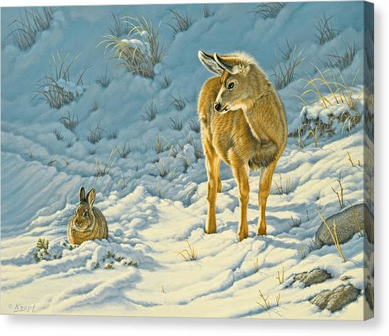 Deer Canvas Print - Passing Curiosity by Paul Krapf