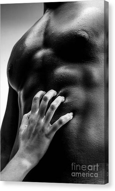 Controversial Canvas Print - Passion by Diane Diederich