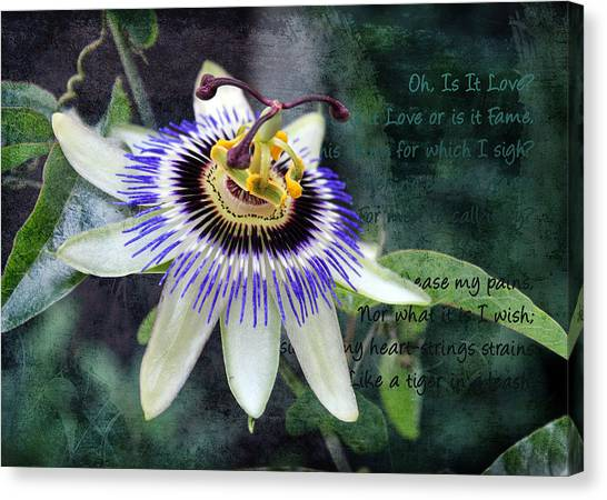 Canvas Print featuring the digital art Passion Flower 1 by Helene U Taylor