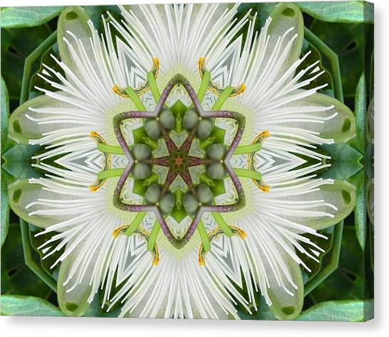 Passion Flower Mandala Canvas Print