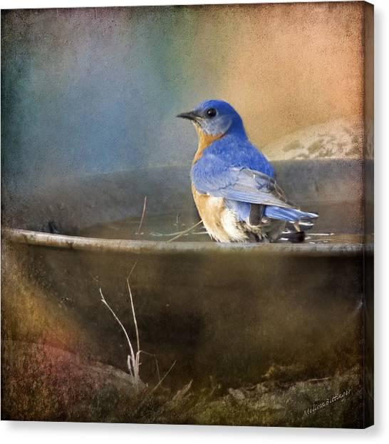 Pastel Eastern Bluebird Canvas Print