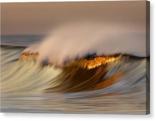 Pastel Gold Wave  Mg9082 Canvas Print