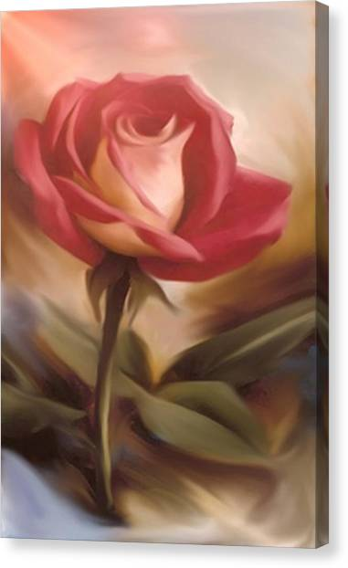 Pastel Light Red Rose Canvas Print
