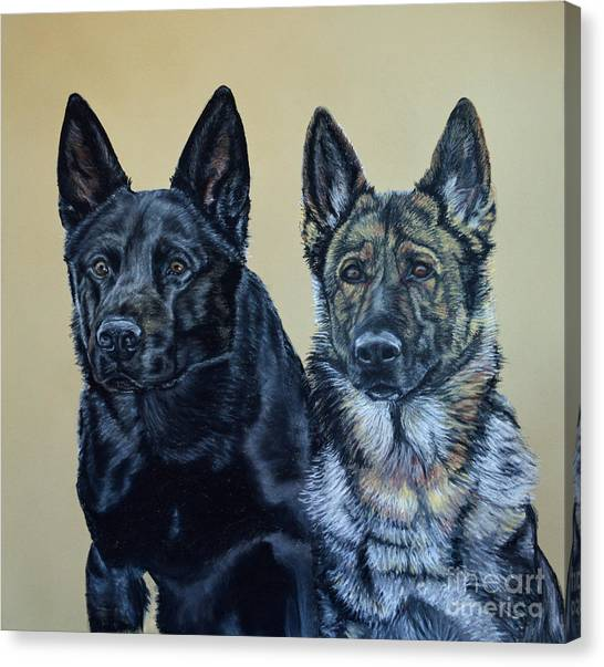 Pastel Portrait Of Two German Shepherds Canvas Print by Ann Marie Chaffin