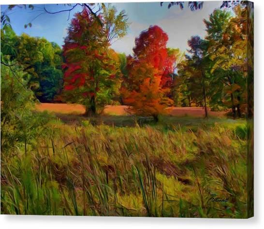 Pasture Gone Fallow Canvas Print