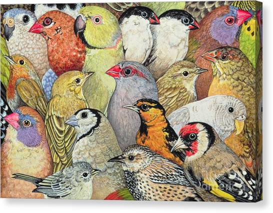 Wrens Canvas Print - Patchwork Birds by Ditz