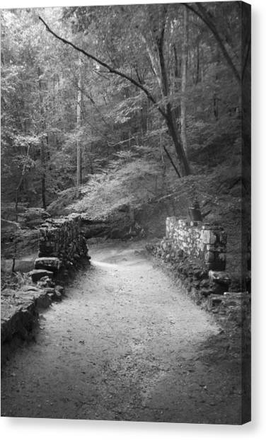 Canvas Print featuring the photograph Path In Black And White by Kelly Hazel