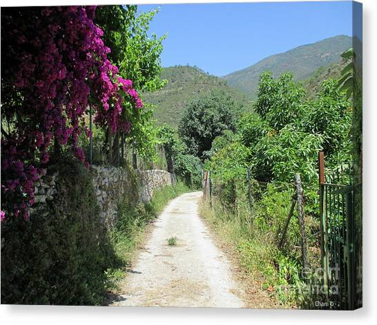 Path In Istan Canvas Print