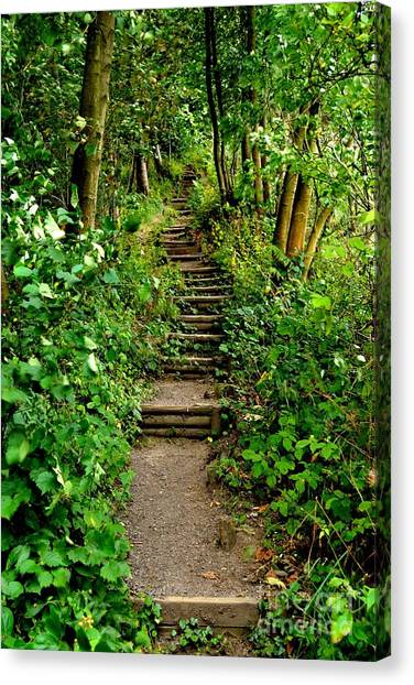 Canvas Print featuring the photograph Path Into The Forest by Scott Lyons