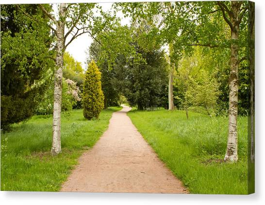 Canvas Print - Path Leading Through The Countryside On An Overcast Day by Fizzy Image