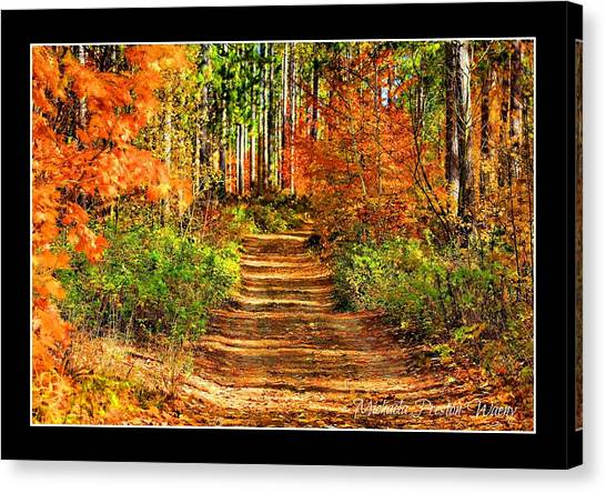 Path Of Life Canvas Print