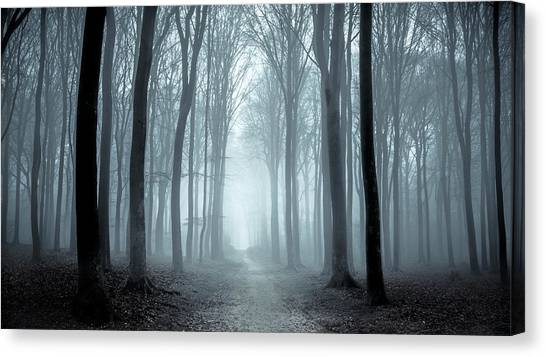 Path Through A Misty Forest During A Foggy Winter Day Canvas Print by Sjo