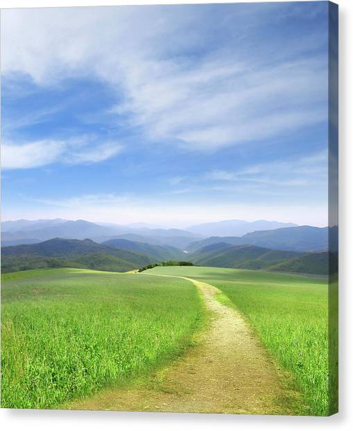 Rolling Hills Canvas Print - Path Through Field Leading To Distant by Ryan Etter