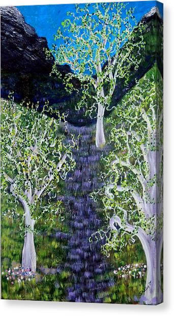 Path Through The White Oaks Canvas Print