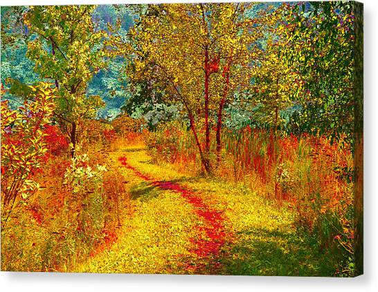 Path Through The Woods Canvas Print