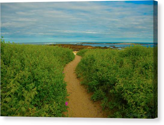 Path To Blue Canvas Print
