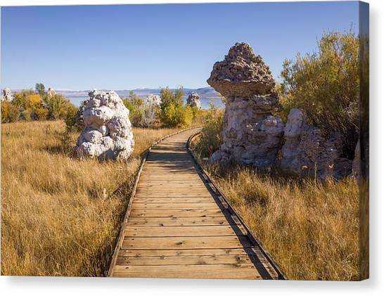Canvas Print featuring the photograph Path To Mono Lake by Priya Ghose
