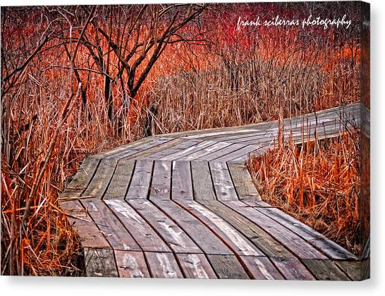 Path To Nature Canvas Print by Frank Sciberras