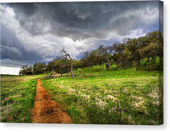 Path To The Clouds Canvas Print