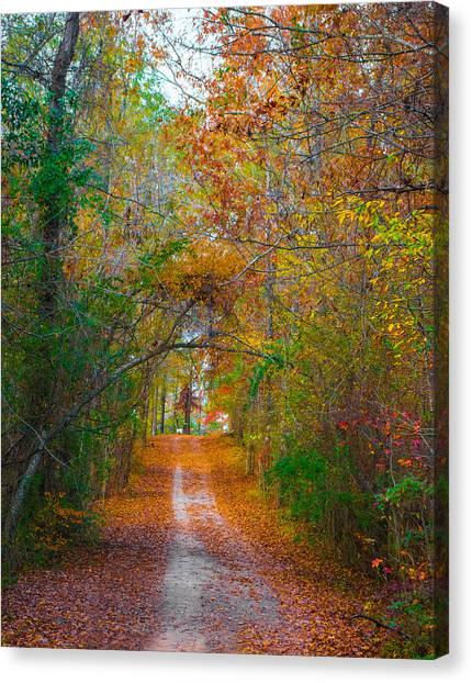 Path To The Fairies Canvas Print