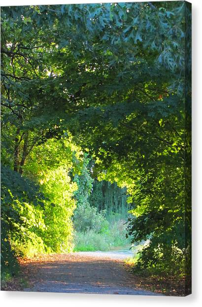 Path To The Light Canvas Print