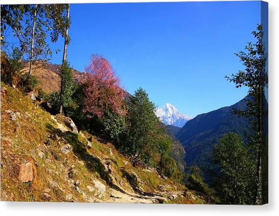 Himalayas Canvas Print - Path To The Mountains by FireFlux Studios