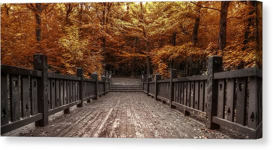 Amber Canvas Print - Path To The Wild Wood by Scott Norris